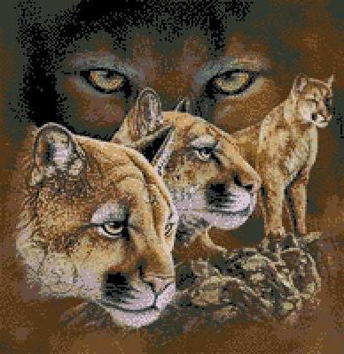 Большие кошки, природа