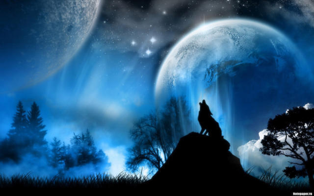 Волк и лунная ночь, оригинал