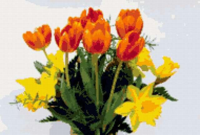 Тюльпаны и нарциссы