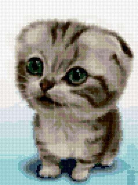 Котенок, предпросмотр