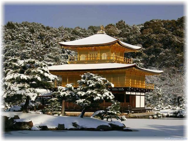 Японский дом, город, дерево,