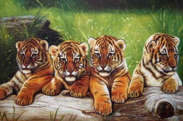 Тигрята, животные