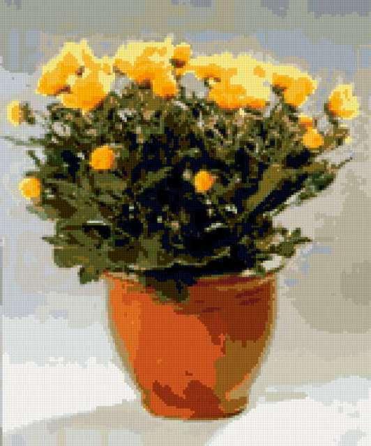 Желтые цветы, предпросмотр