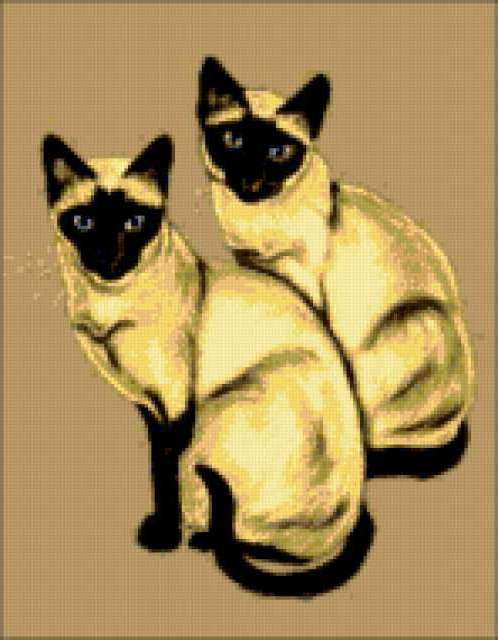 Сиамские кошки, предпросмотр