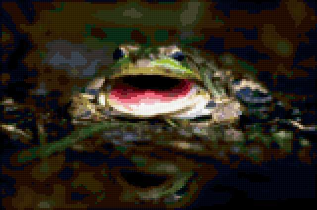 Жаба, предпросмотр