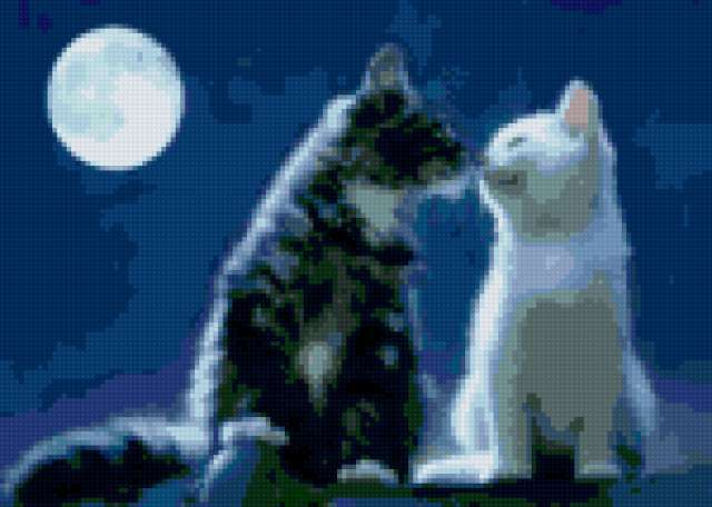 Свидание при луне, свидание,