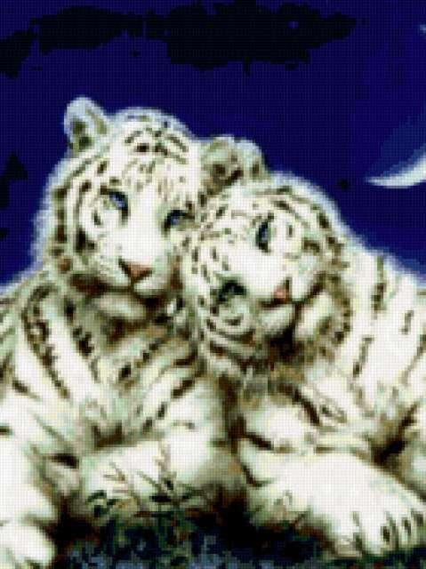 Белые тигрята, предпросмотр