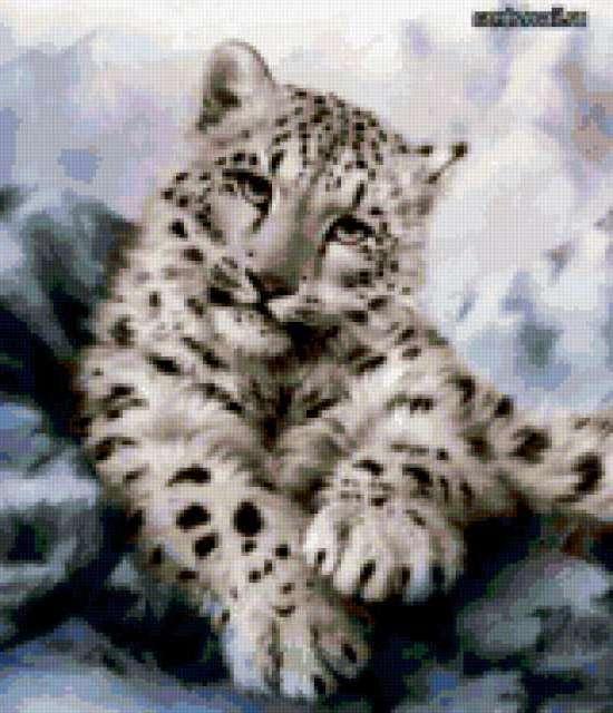 Схема вышивки «Белый леопард»