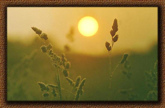 Восход солнца, восход солнца