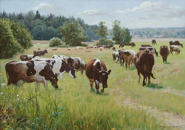 Коровы на выгуле, корова,