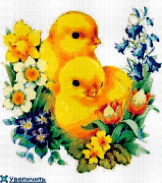Цыплята, цыплята, цветы, птицы
