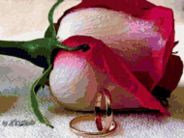 Обручальные кольца 1