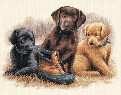 Щенята, животные, собака