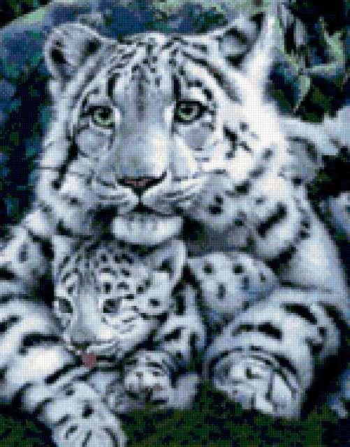 Белая тигрица и тигренок ,