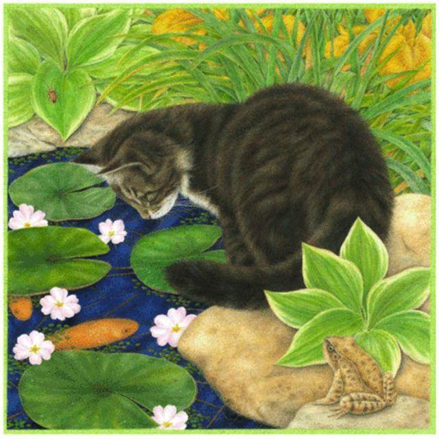 Кот и кувшинки, коты, кошки,