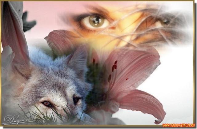Девушка и волк, волк, девушка,