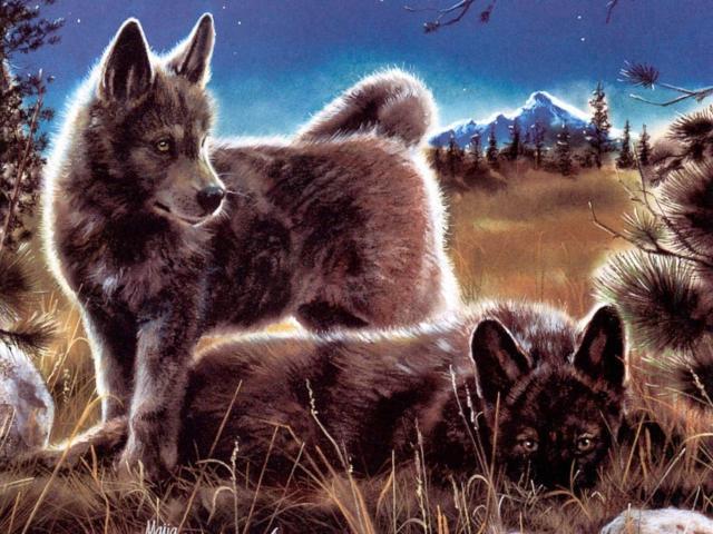 Маленькие волчата, животные