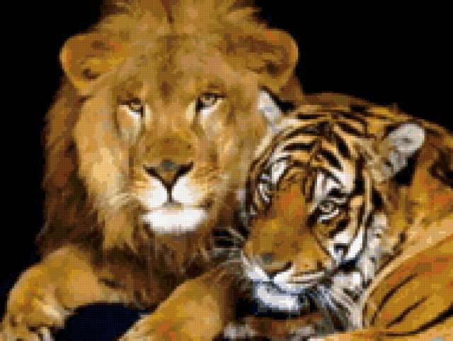 Лев и тигр, предпросмотр