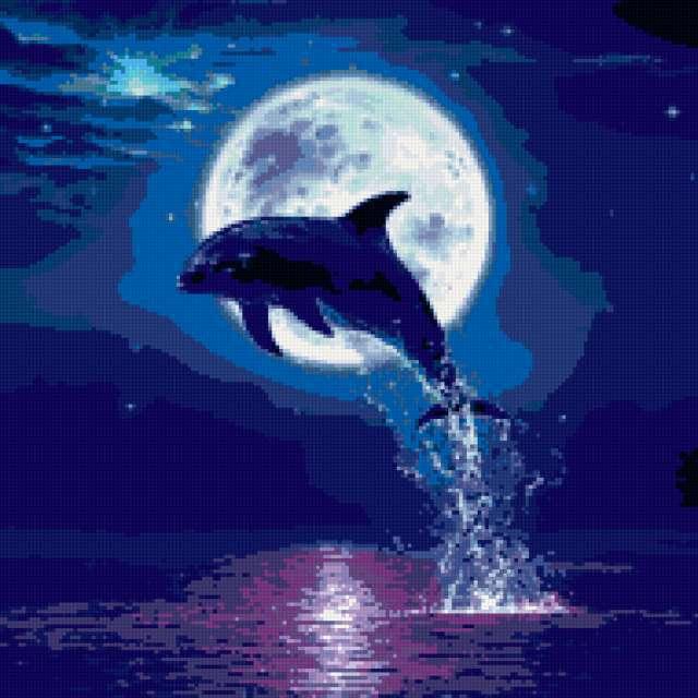 Прыжок дельфина, предпросмотр