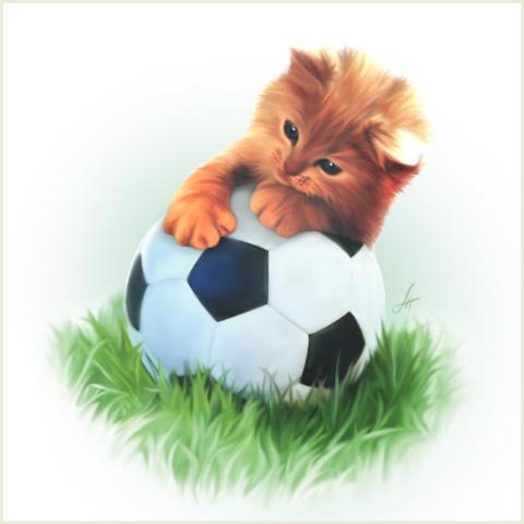 Котенок-футболист, оригинал