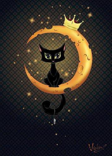Лунный кот, коты