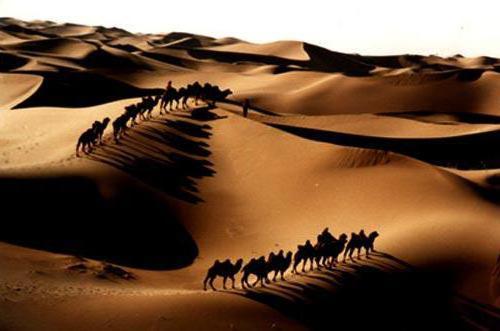 К схеме вышивки «Пустыня и