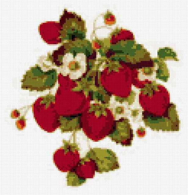 Клубника, клубника, ягоды