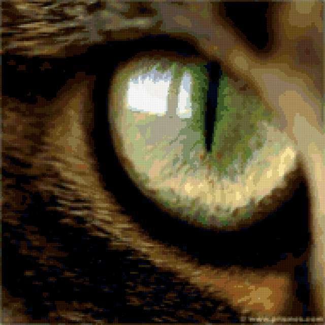 Кошачий глаз, предпросмотр