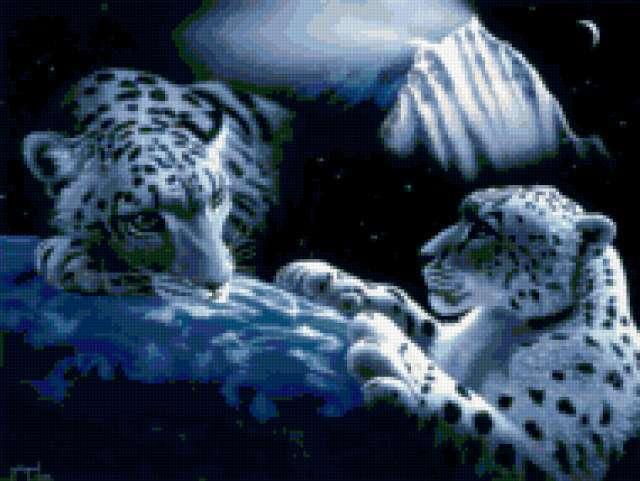 Планета леопардов