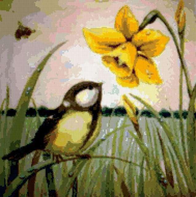 Птичка и нарцис, предпросмотр