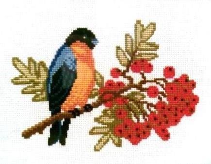 схему вышивки «Снегирь на