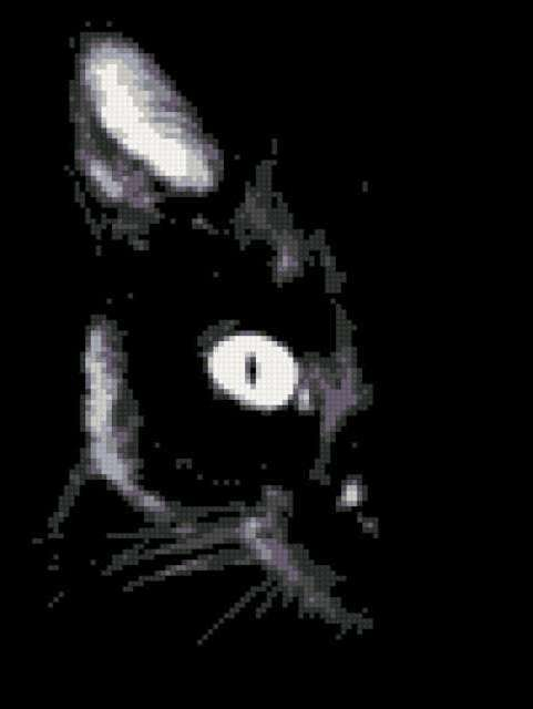 Черный кот, предпросмотр