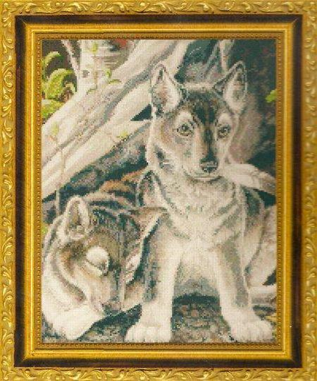 Волчата, оригинал