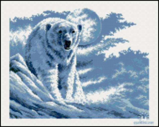 Белый медведь, белый медведь,