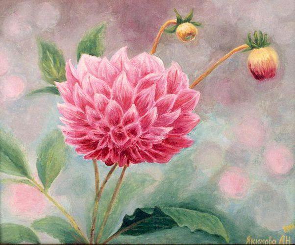 Георгин-акварель, цветы