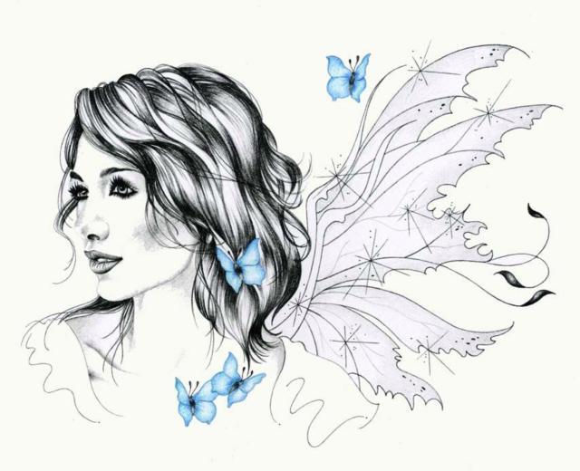 Голубые бабочки, бабочка