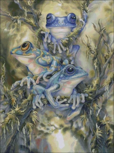 Синие жабы, оригинал