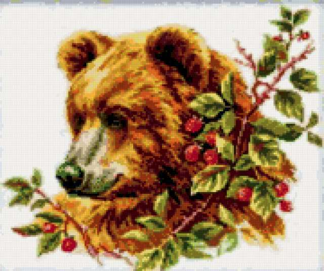 Медведь в малине, предпросмотр