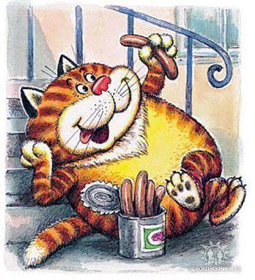 Обжорство котов