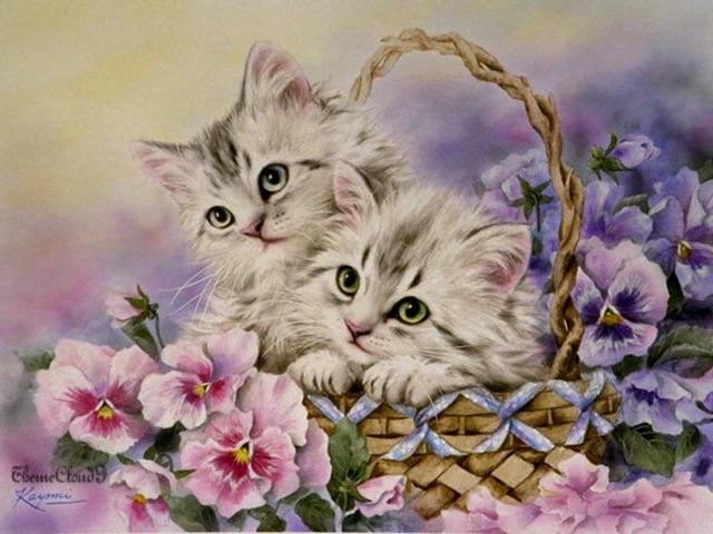 Котята в корзинке, животные,