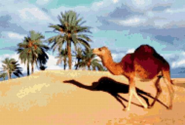Вышивка крестом схема верблюд