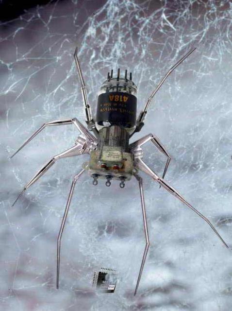 Паук робот, насекомые