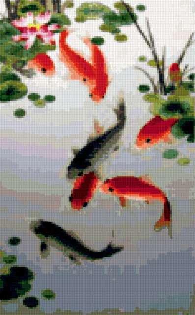 Девять карпов, рыбы