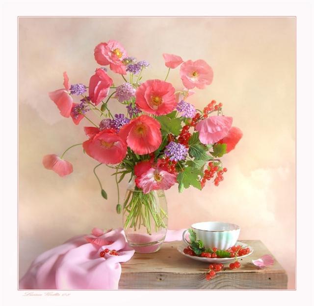 Алые маки, цветы, букет, маки,