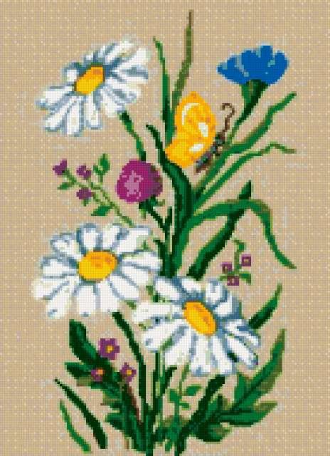 Полевые цветы, предпросмотр