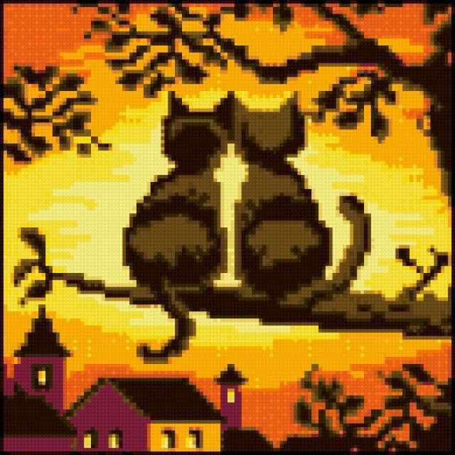 Кошки на закате, животные,