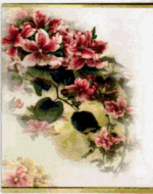 Фуксия, цветы, фуксия, букет