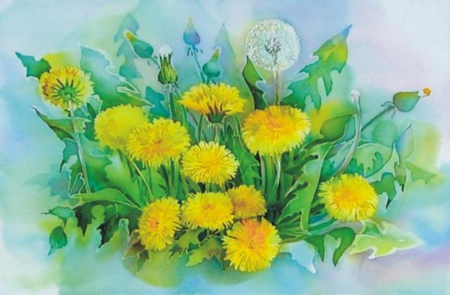 Одуванчики, цветы