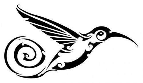 Колибри, колибри, птица
