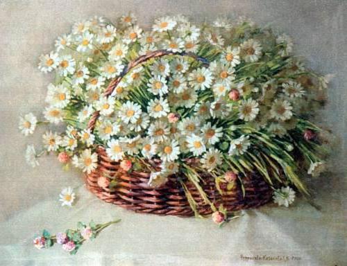 Ромашки и клевер, цветы,